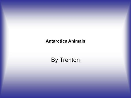 Antarctica Animals By Trenton. Krill  rinelife.shtmlhttp://www.antarcticconnection.com/antarctic/science/ma.