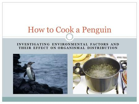 How to Cook a Penguin Investigating Environmental Factors and their effect on organismal Distribution.