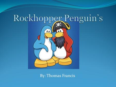 By: Thomas Francis. Rockhopper Penguin's have their own hair styles Rockhopper's are found in Sub-antarctic islands.