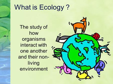 What is Ecology ? The study of how organisms interact with one another and their non-living environment.