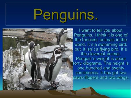 Penguins. I want to tell you about Penguins. I think it is one of the funniest animals in the world. It`s a swimming bird, but it isn`t a flying bird.