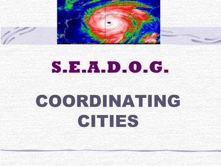 S.E.A.D.O.G. COORDINATING CITIES. S.E.A.D.O.G. SOUTHWEST CLEARINGHOUSE HOUSTON AIRPORT SYSTEM CONTACT: BOB WHITE TOM BARTLETT 281 233-1968 281 233-1994.