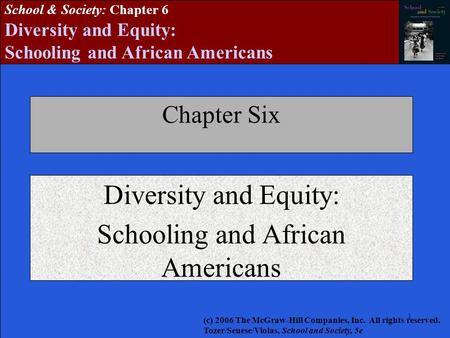 Diversity and Equity: Schooling and African Americans