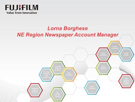 Lorna Borghese NE Region Newspaper Account Manager.
