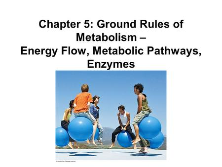 Chapter 5: Ground Rules of Metabolism – Energy Flow, Metabolic Pathways, Enzymes.