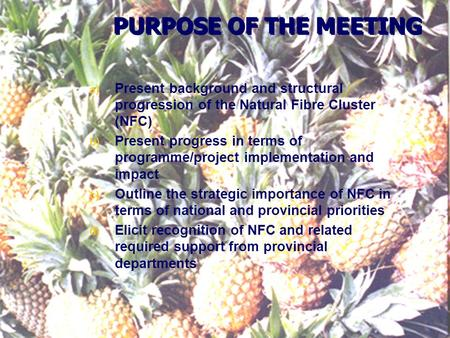 PURPOSE OF THE MEETING a) Present background and structural progression of the Natural Fibre Cluster (NFC) b) Present progress in terms of programme/project.