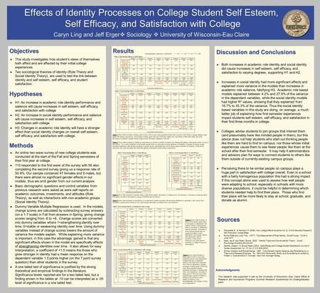 Effects of Identity Processes on College Student Self Esteem, Self Efficacy, and Satisfaction with College Self Efficacy, and Satisfaction with College.