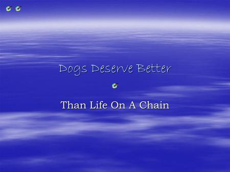 Dogs Deserve Better Than Life On A Chain. Imagine.