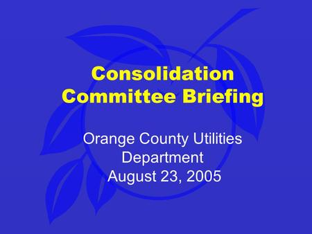 Consolidation Committee Briefing Orange County Utilities Department August 23, 2005.