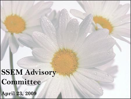 SSEM Advisory Committee April 23, 2009. Topics of Discussion  Upcoming SSEM Open Labs  SpS Task Model  Release Date  Sample Screens  Finalization.