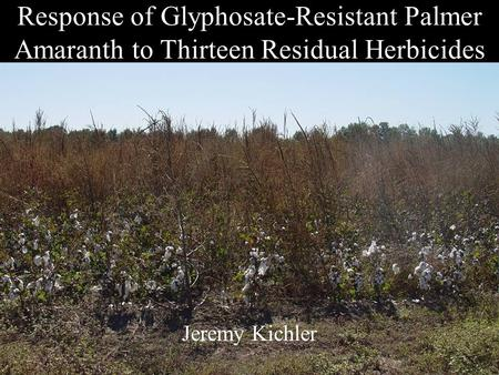Response of Glyphosate-Resistant Palmer Amaranth to Thirteen Residual Herbicides Jeremy Kichler.