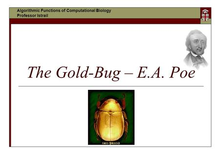 analysis of gold bug A sober mystification poe's the gold bug the gold bug, written in 1843, isn't among edgar allan poe's best-known tales perhaps the problem is the fact that its.