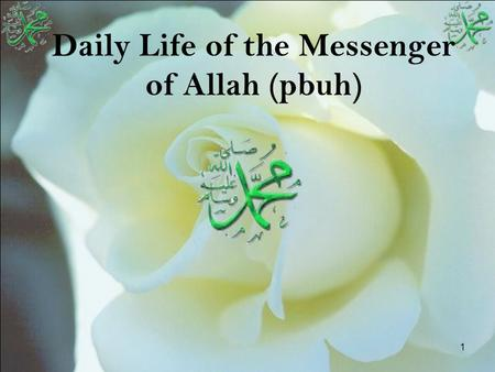 1 Daily Life of the Messenger of Allah (pbuh). 2 Outline Timeline He is the role model for people His daily life.