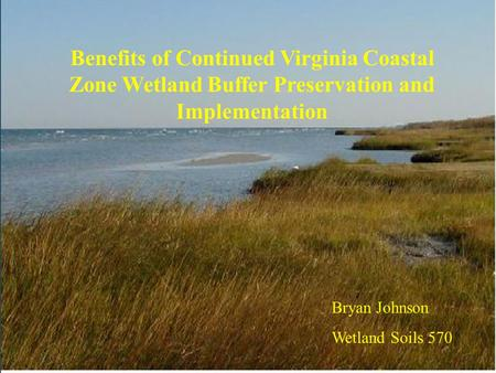 Benefits <strong>of</strong> Continued Virginia Coastal Zone Wetland Buffer Preservation <strong>and</strong> Implementation Bryan Johnson Wetland Soils 570.