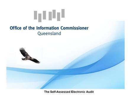 The Self-Assessed Electronic Audit. Why have monitoring? Section 131 Right to Information Act 2009 (RTI Act)  The functions of the Information Commissioner.