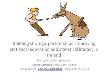 Building strategic partnerships: Improving statistical education and statistical literacy in Ireland Databank and Dissemination, Central Statistics Office,