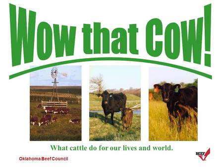 Oklahoma Beef Council What cattle do for our lives and world.