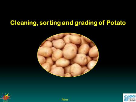 Cleaning, sorting and grading of Potato