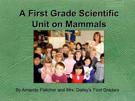 A First Grade Scientific Unit on Mammals By Amanda Fletcher and Mrs. Dailey's First Graders.