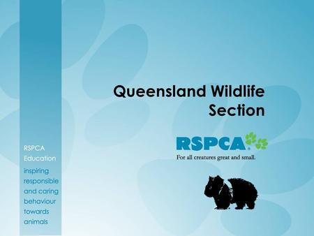 Queensland Wildlife Section. How is the RSPCA involved in Wildlife Conservation?