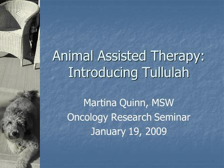 Animal Assisted Therapy: Introducing Tullulah Martina Quinn, MSW Oncology Research Seminar January 19, 2009.