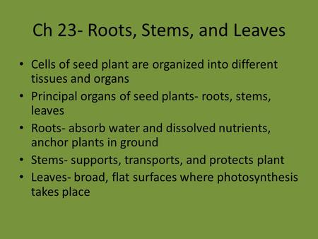 Ch 23- Roots, Stems, and Leaves Cells of seed plant are organized into different tissues and organs Principal organs of seed plants- roots, stems, leaves.