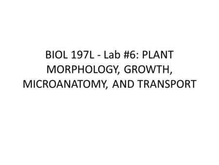 BIOL 197L - Lab #6: PLANT MORPHOLOGY, GROWTH, MICROANATOMY, AND TRANSPORT.