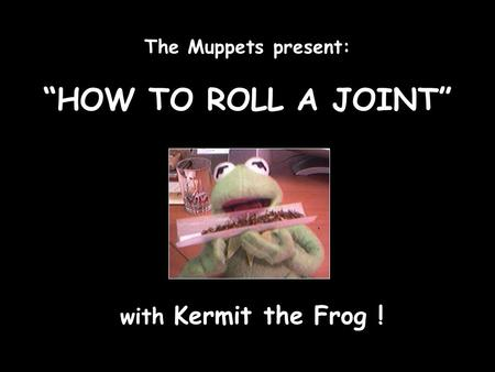 "The Muppets present: ""HOW TO ROLL A JOINT"" with Kermit the Frog !"