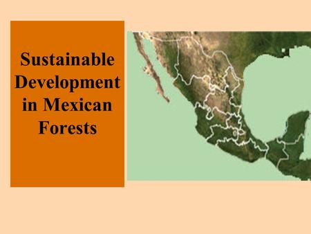 Sustainable Development in Mexican Forests. Why should we care? Benefits –alternative economic/livelihoods strategy to migration to cities, Maquiladoras,