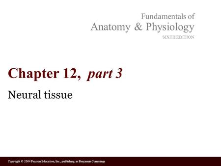 Chapter 12, part 3 Neural tissue.