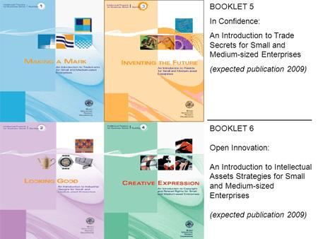 BOOKLET 5 In Confidence: An Introduction to Trade Secrets for Small and Medium-sized Enterprises (expected publication 2009) BOOKLET 6 Open Innovation: