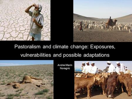 Pastoralism and climate change: Exposures, vulnerabilities and possible adaptations Andrei Marin Noragric.