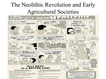 an analysis of neolithic revolution This student essay consists of approximately 2 pages of analysis of the neolithic era.