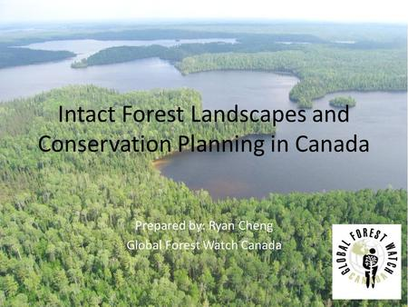Intact Forest Landscapes and Conservation Planning in Canada Prepared by: Ryan Cheng Global Forest Watch Canada.