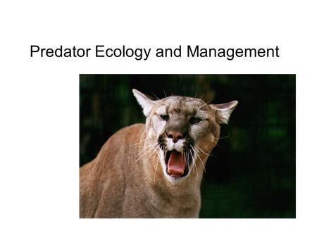 Predator Ecology and Management What is a predator?