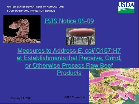 FSIS Notice 05-09 Measures to Address E. coli O157:H7 at Establishments that Receive, Grind, or Otherwise Process Raw Beef Products FSIS Notice 05-09 Measures.