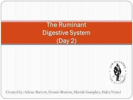 The Ruminant Digestive System (Day 2) Created by: Arlene Barrett, Dennis Bratton, Mariah Gumphry, Haley Vrazel.