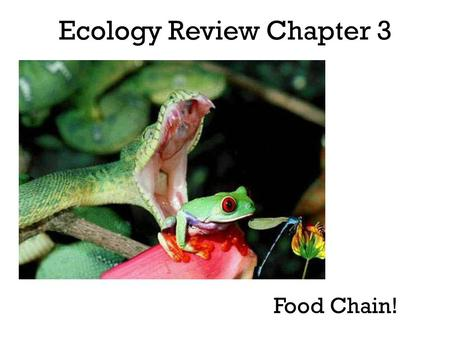 Ecology Review Chapter 3 Food Chain!. Ecology Study of the interactions that take place between organisms and organisms and their environment.