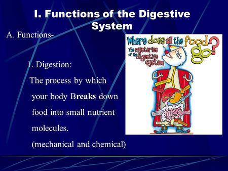 I. Functions of the Digestive System