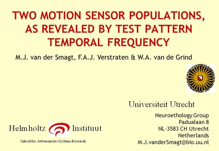 TWO MOTION SENSOR POPULATIONS, AS REVEALED BY TEST PATTERN TEMPORAL FREQUENCY Neuroethology Group Padualaan 8 NL-3583 CH Utrecht Netherlands