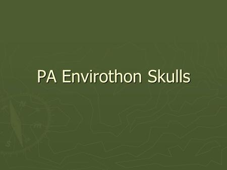 PA Envirothon Skulls. Identifying Skulls ► Eye placement  Predators ► Eye sockets point forward  Prey ► Eye sockets are placed to side of skull ► Shape.
