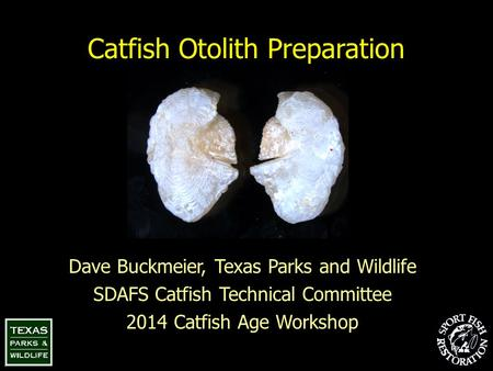 Catfish Otolith Preparation Dave Buckmeier, Texas Parks and Wildlife SDAFS Catfish Technical Committee 2014 Catfish Age Workshop.