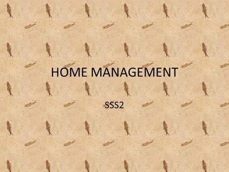 HOME MANAGEMENT SSS2.