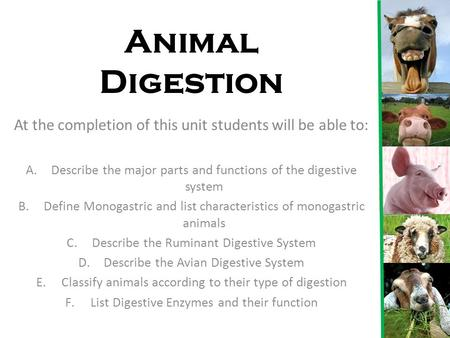 Animal Digestion At the completion of this unit students will be able to: Describe the major parts and functions of the digestive system Define Monogastric.