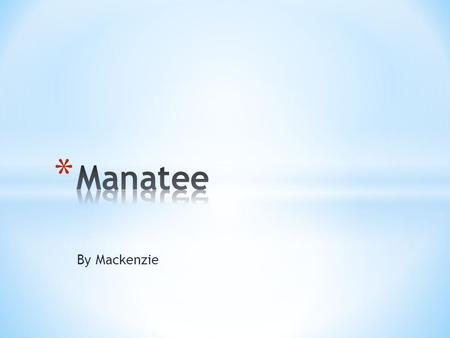 By Mackenzie. * Manatees can be 10-12 feet long. * Manatees can weigh 1,500-1,800 pounds. * Manatees are grayish brown.