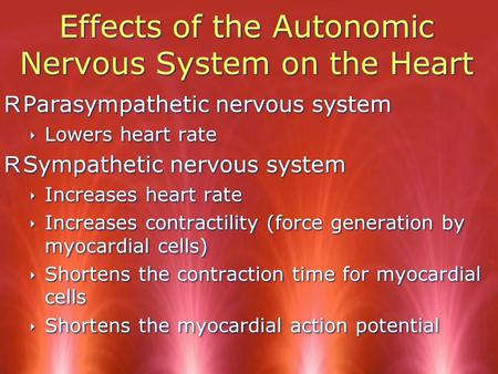 Effects of the Autonomic Nervous System on the Heart RParasympathetic nervous system ‣ Lowers heart rate RSympathetic nervous system ‣ Increases heart.