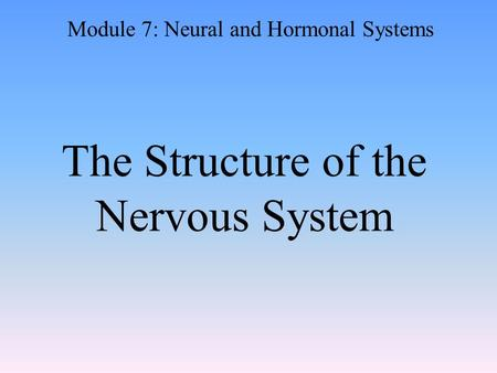 The Structure of the Nervous System Module 7: Neural and Hormonal Systems.