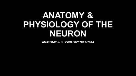 ANATOMY & PHYSIOLOGY OF THE NEURON ANATOMY & PHYSIOLOGY 2013-2014.