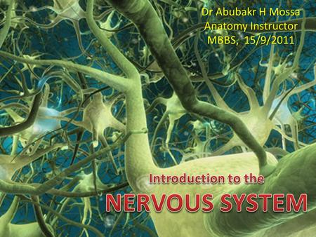 Dr Abubakr H Mossa Anatomy Instructor MBBS, 15/9/2011.