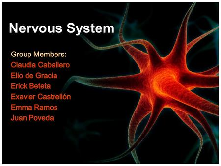Nervous System Objectives: Student s will be able to: Identify dendrites, cell body, axon of a neuron Differentiate the structure and function of a motor.